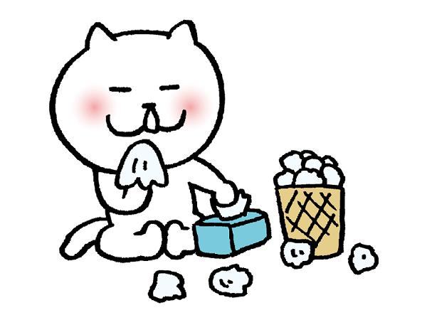 猫とゴミ箱